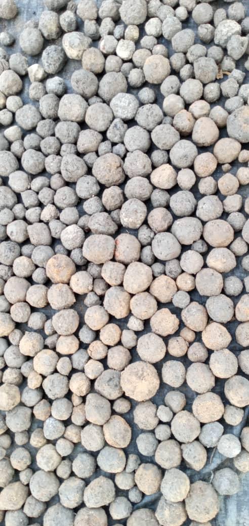 seedballs séchées