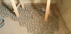 séchage boulettes de graines