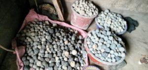 réserves de bombes de graines